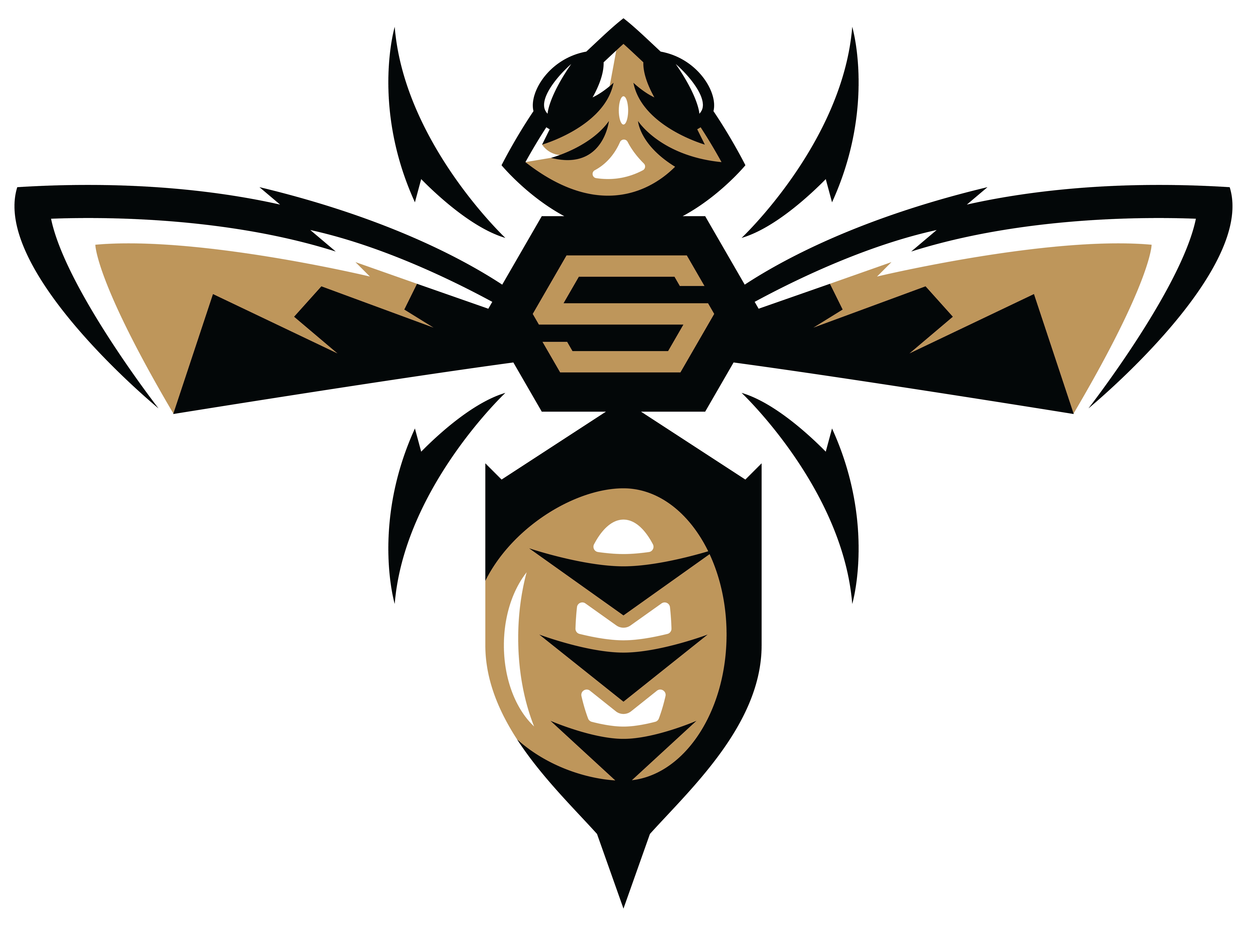Stevensville Public Schools Logo